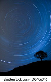 Image of a isolated tree silhouette on a hill with a blue background at night with startrail