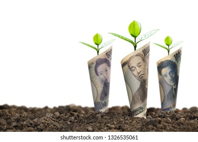 Image of Japanese yen banknotes with plant growing on top for business, saving, growth, economic concept isolated on white background