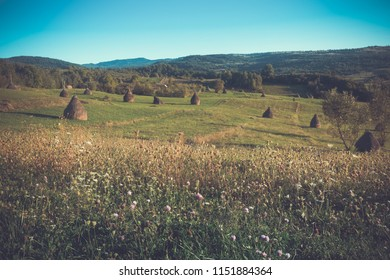 Image of Karpaty mountains in Maramures in Romania.