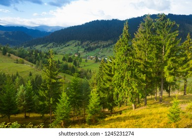 Image of Karpaty mountains on Bucovina in Romania.