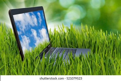 Image of laptop in the grass.The laptop represents a business theme.laptop in the grass in the summer garden.Sky and clouds on the laptop screen.