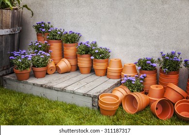 Image of lots of terracotta plant pots, at a garden center.