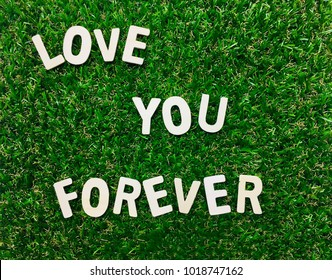Image Love You Forever,wooden alphabet on green grass background with space for your text and design.Concept for love,card,calendar,banner of Valentine's Day.Blur picture and exposure.