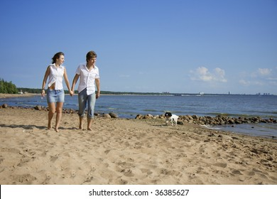 The image of the lovers who are walking with a dog on the beach