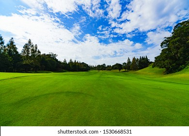 Image of management : landscape of Japanese golf scene in fairway ( safety area )