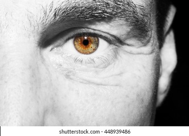 Image of man's brown eye close up.