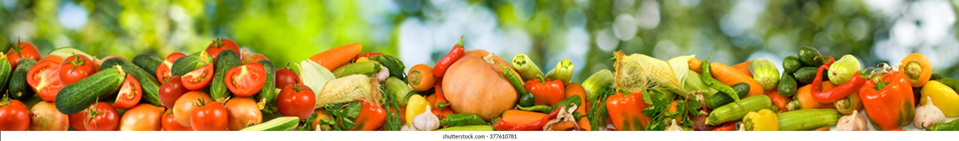 image of many raw vegetables on a green background close-up