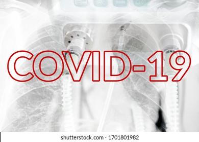 Image Of Medical Ventilator. Pulmonary Pathology of Early-Phase 2019 Novel Coronavirus (COVID-19) Pneumonia