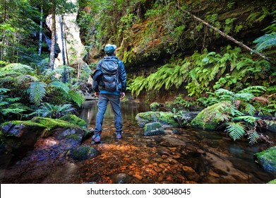 Image of a men standing at Grand Canyon track in the Blue Mountains, Sydney, NSW, Australia.