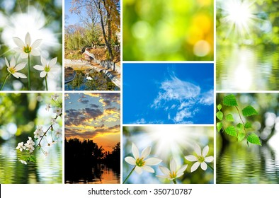 image of mix beautiful views of nature closeup