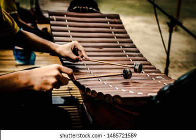 The image of the musician's hand Playing Thai xylophone.