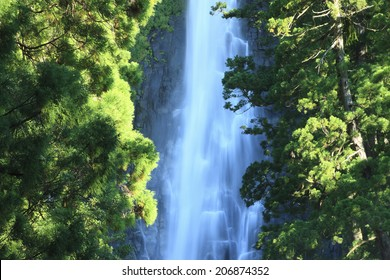 An Image of Nachi Falls
