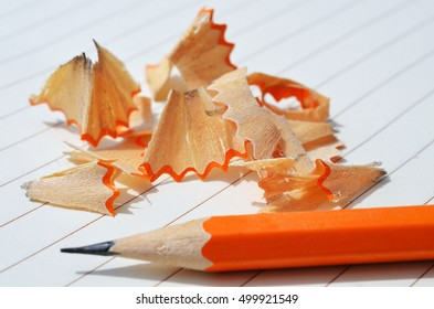 An image of one sharpened pencil and pencil shavings on a piece of white ruled paper.