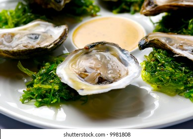 Image of oysters on garnish with sauce