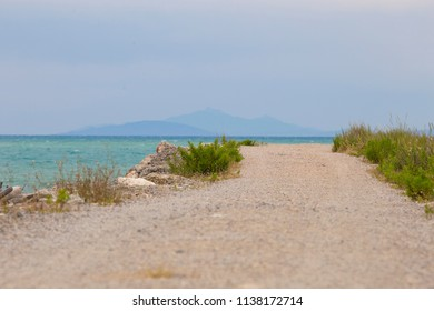 image of a path in the Maremma national park in Tuscany Italy with the sea in the background