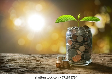 Image of pile of coins with plant on top in glass jar for business, saving, growth, economic concept