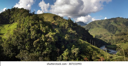 Image of the rainforest in the peruvian amazon.