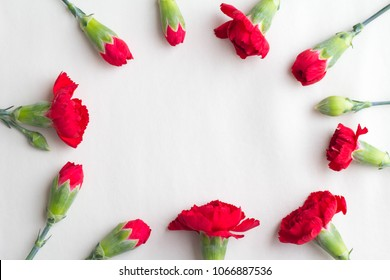 Image of red carnation Mother's Day
