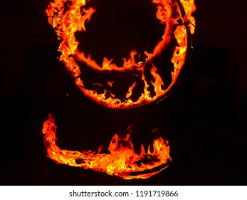 It is an image of ring of fire which is used in one type of marshal arts named kalaripayattu and in various religious rituals .It is an sign of survival of flora and fauna  against the difficulties...