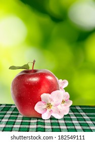 image of ripe red apple on a green background