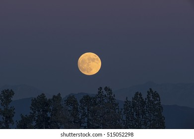 Image of the rising moon as taken from Pasadena, California, USA. This image was taken on November 13. The 'supermoon' is expected on November 14. A supermoon is relatively brighter and bigger.