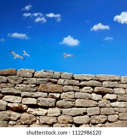 an image of a rock wall and flying birds