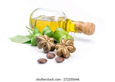 Image of sacha inchi peanut seed on white background