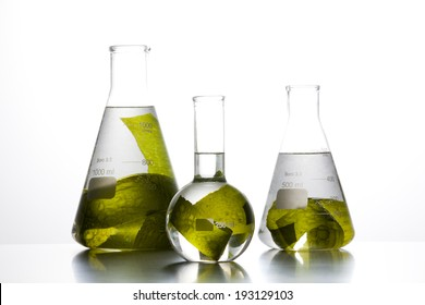 the image of science and seaweed