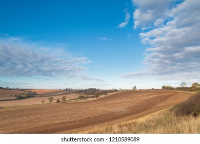 An image of a section of farmland, which had been prepared for planting, taken on an autumn afternoon in Rutland, England, UK.