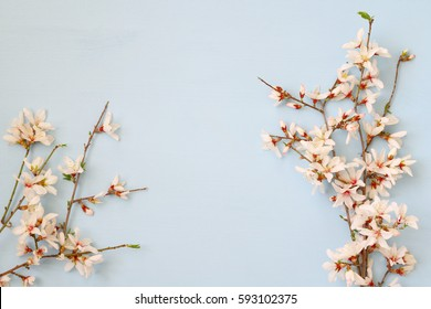 image of spring white cherry blossoms tree on wooden background