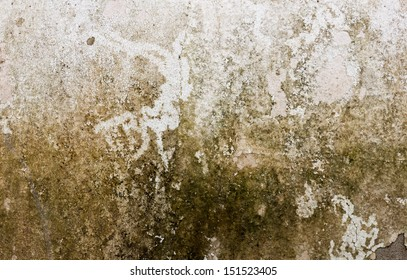the image of the Stain on the wall