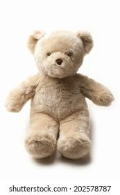 An Image of Teddy Bear