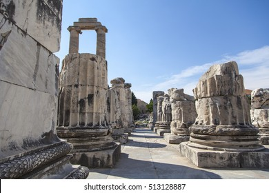 An image from the Temple of Apollo in the ancient city of Didim, Turkey.