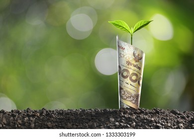 Image of THAI money banknote with plant growing on top for business, saving, growth, economic concept
