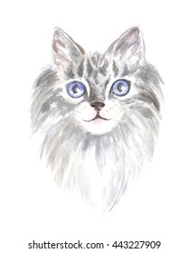 Image of a thoroughbred cat. Watercolor painting.