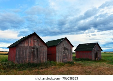 An image of three red painted old granaries in the middle of a field.