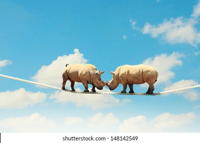 Image of two rhino struggling on rope high in sky