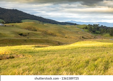 An image of a typical rural landscape in New Zealand