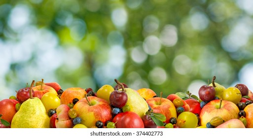 Image of various  fruits and berries closeup on a green background closeup