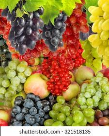 Image of various ripe fruits closeup