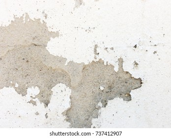 Image wall plaster