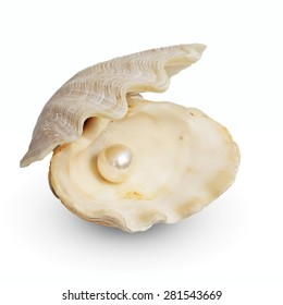 Image of a white pearl ball in a Open oyster shell isolated on white. This has clipping path.