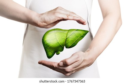 Image of a woman in a white dress and 3d model of the liver between her hands. Concept of healthy liver and donation.