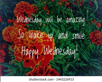 Image with wordings or quotes about wedesday, hump day