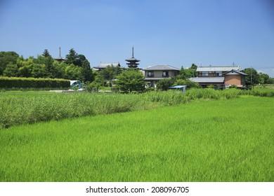 An image of Yakushiji