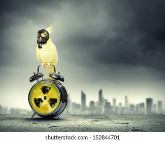 Image of yellow parrot in gas mask sitting on alarm clock. Ecology concept