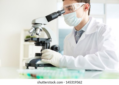 Image of a young intern analyzing specimens in the laboratory