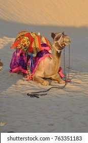 Images from Jaisalmer