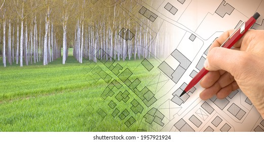 Imaginary topographic cadastral map and land parcels of territory with trees on background and buildable vacant land for sale - concept image.
