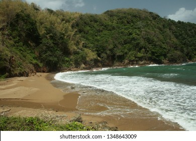 Immaculate beach in Scarborough, Ward of Tobago, Trinidad and Tobago